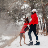 A List of Tips to Have Fun in the Snow With Fido