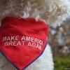 MAGA Make America Great Again Donald J. Trump Reversible Pet Dog Bandana in All Sizes for Cats and Puppies too