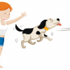 Fun Exercise Routine To Keep Your Pet Healthy & Active