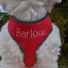 Custom Embroidered Red Plush Reflective Soft No Pull DOG HARNESS Personalized with your Pet's Name or Blank