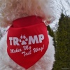 TRUMP Makes My Tail Wag Cute Pet Dog Bandana in 2 Sizes Big and Small