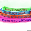 DESIGN YOUR OWN Personalized Dog Collar for Dog Identification with Matching Leash Option