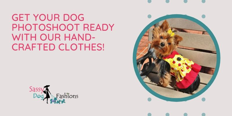 Get Your Dog Photoshoot Ready With Our Hand-crafted Clothes!