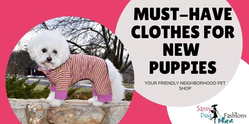 Must-Have Clothes For New Puppies