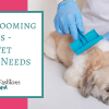 Dog Grooming Supplies - Every Pet Owner Needs