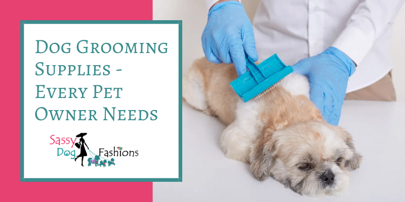 Dog Grooming Supplies – Every Pet Owner Needs