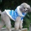 Luxurious Blue Ruched Dog Warm Winter Coat in all Sizes for Small to Medium Dogs and Puppies