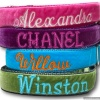Personalized Velvet Dog Collar in Multiple Colors with Leash Option