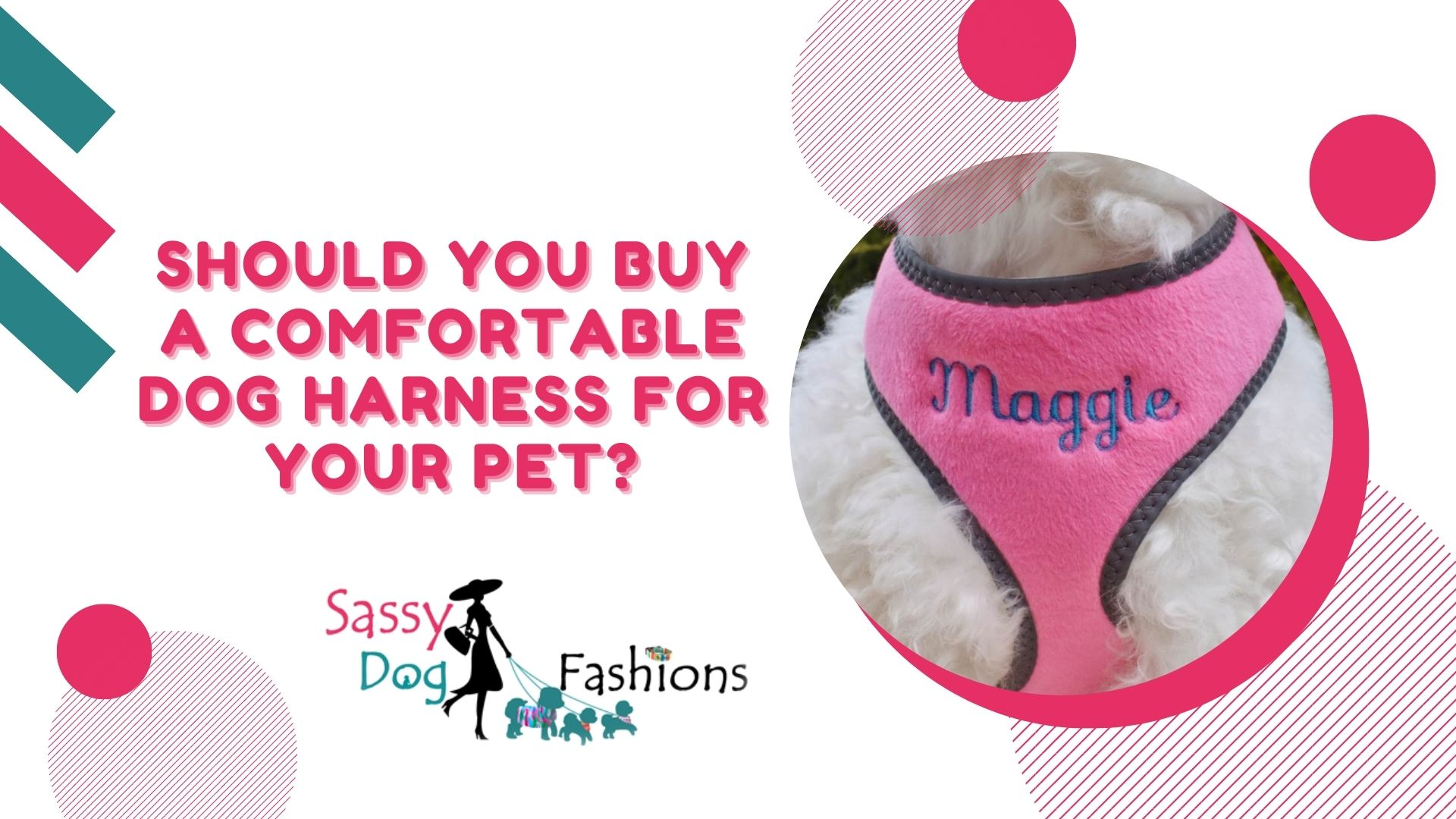 Should You Buy A Comfortable Dog Harness For Your Pet?