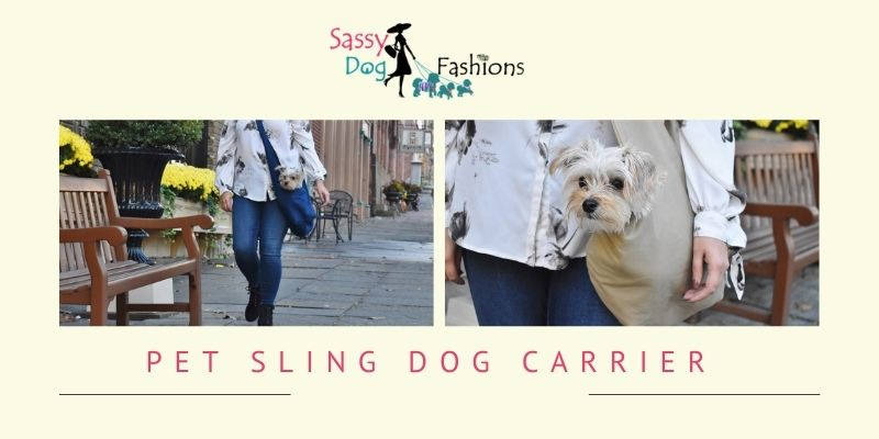 Size of the dog carrier