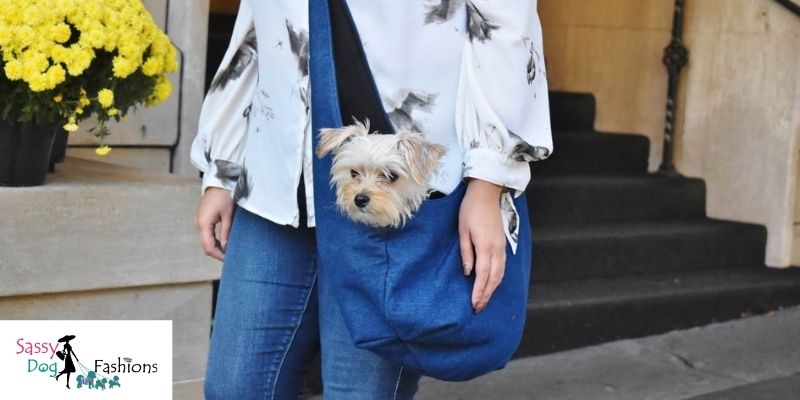The Style Of The Dog Carrier