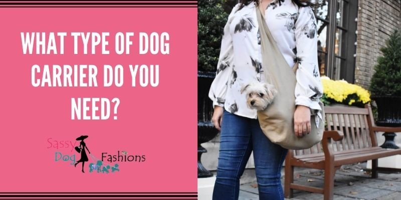 What Type Of Dog Carrier Do You Need?