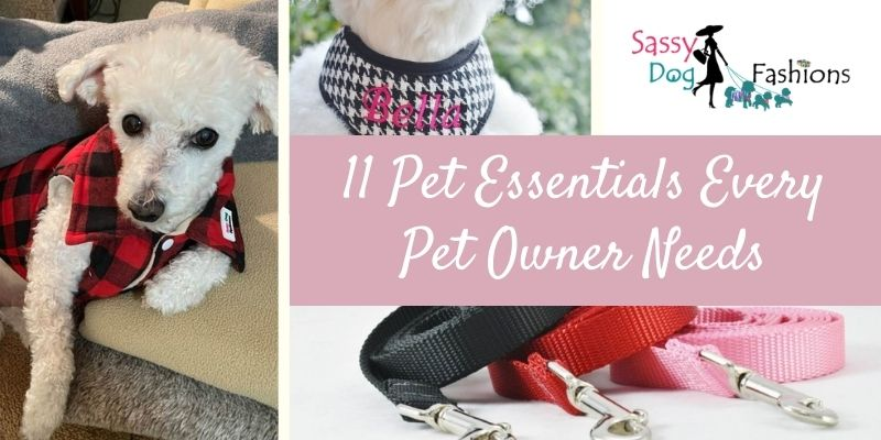 11 Pet Essentials Every Pet Owner Needs