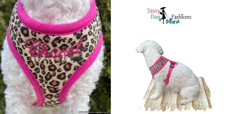 Amazing No-Pull Dog Harnesses