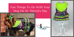 2. Fun Things To Do With Your Dog On St. Patrick's Day
