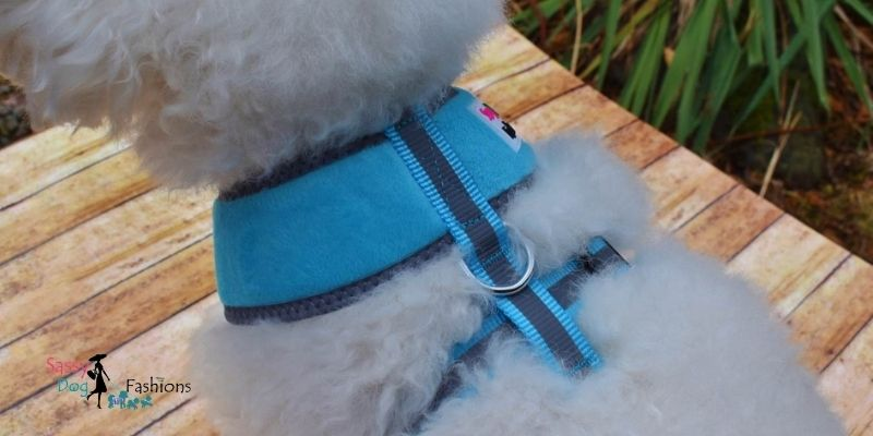 Dog Harness Is The Safest Way Of Controlling Your Dog