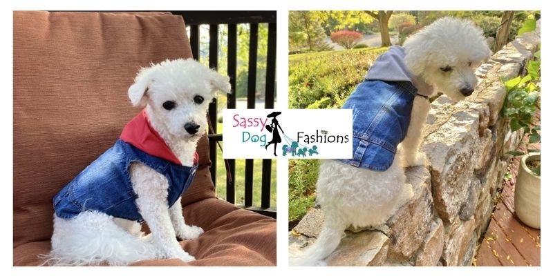 Get Some Dog Coats And Jackets
