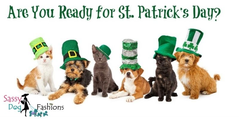 You Can Bring Your Dog To Enjoy The St. Patrick's Day Parade