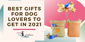Best Gifts for Dog Lovers to get in 2021
