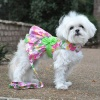 pink-hawaiian-floral-dog-harness-dress-with-matching-leash-7852