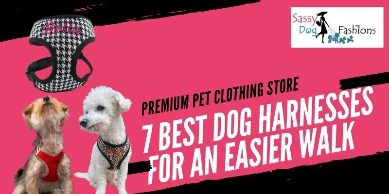 7 Best Dog Harnesses For An Easier Walk
