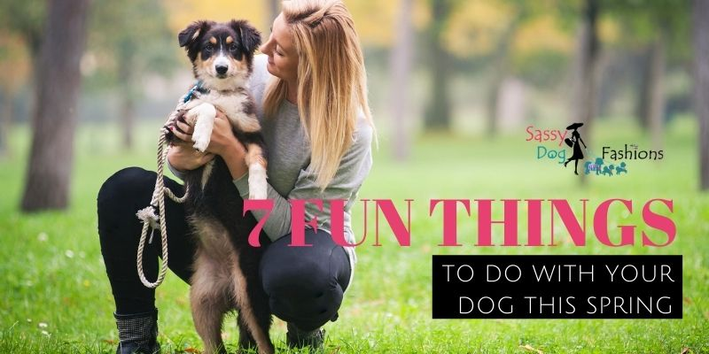 7 Fun Things To Do With Your Dog This Spring