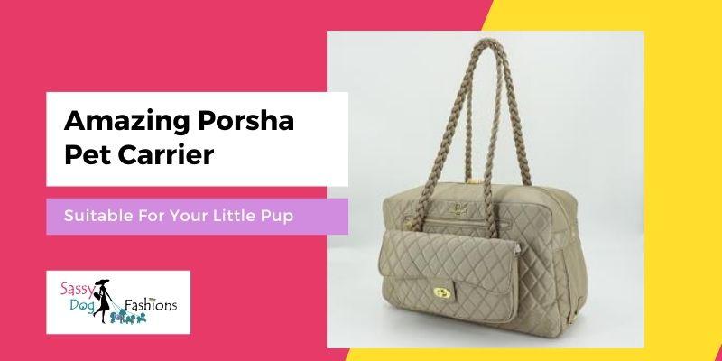 Amazing Porsha Pet Carrier — Suitable For Your Little Pup