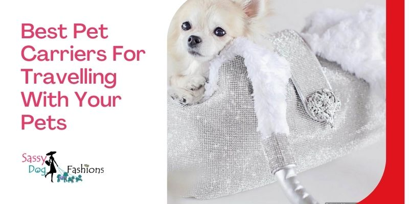 Best Pet Carriers For Travelling With Your Pets