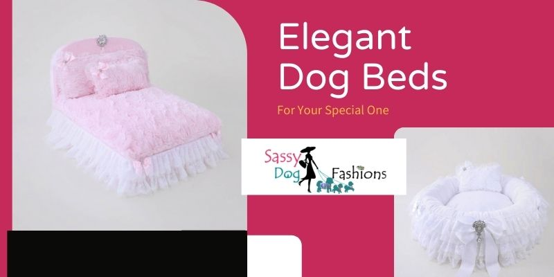 Get Dog Beds For your Little Furry Friend