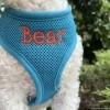 Personalized Blue Mesh Soft Pet Dog Harness with Embroidered Name Option
