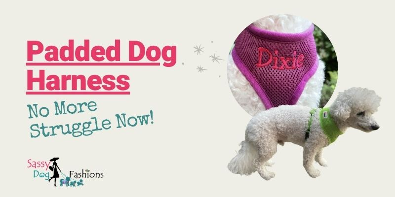 Padded Dog Harness: No More Struggle Now!