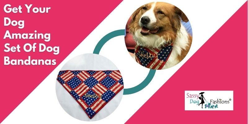 dog bandanas wholesale