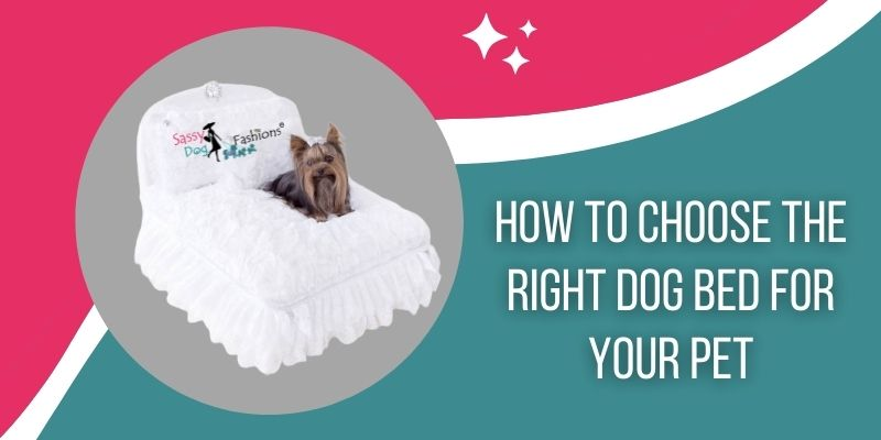 How To Choose The Right Dog Bed For Your Pet