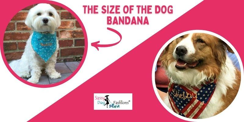 Dog Bandana Size