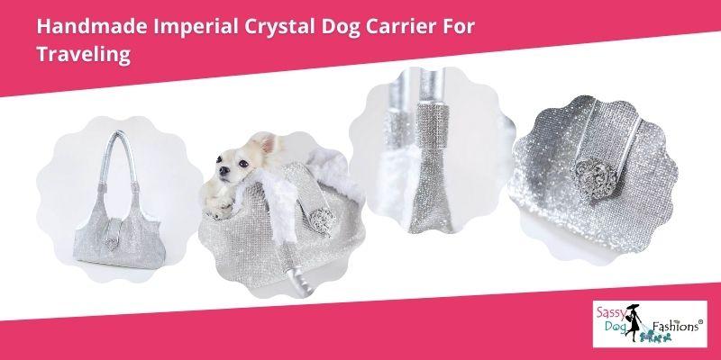 designer dog accessories