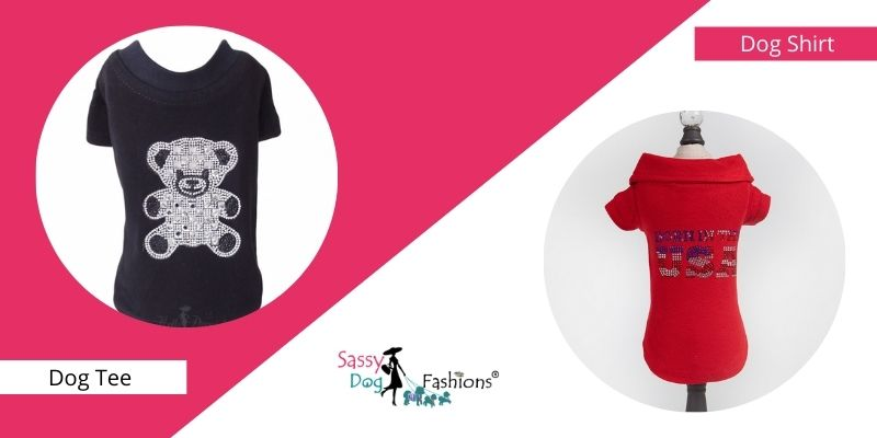 Dress Your Dog In Stylish Cool Tees And Shirts This Summer