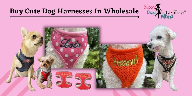Buy Cute Dog Harnesses In Wholesale