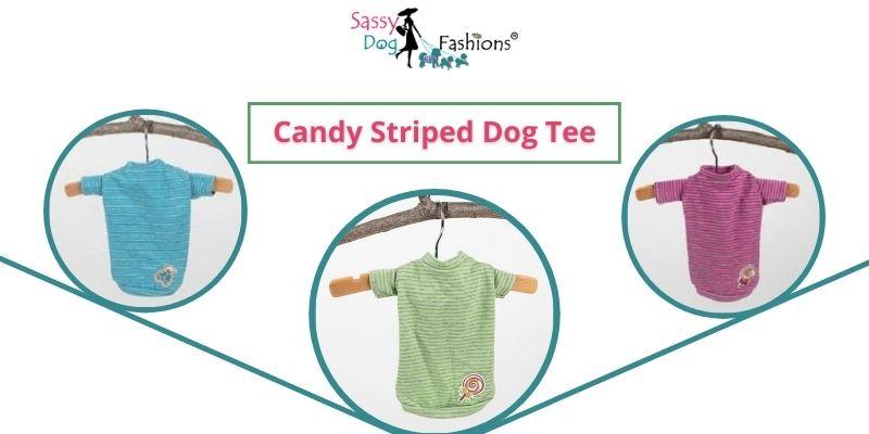 dog t shirts