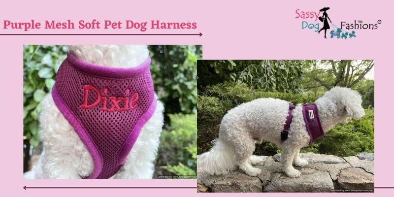 Designer Dog Harnesses
