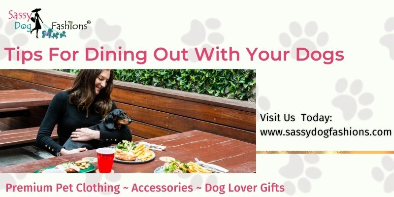 Tips For Dining Out With Your Dogs